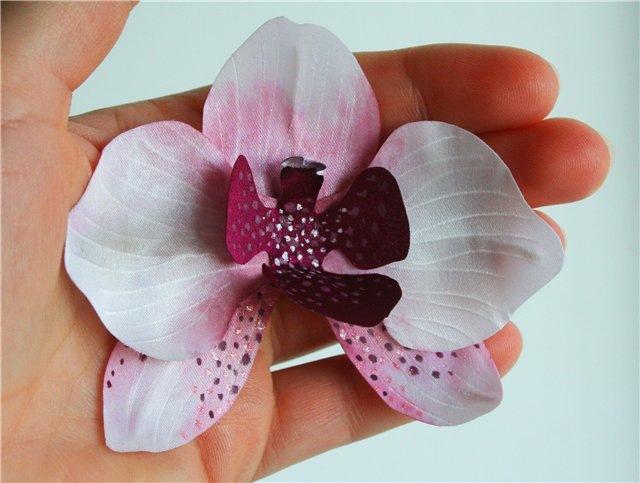 Как сделать крупнее цветки орхидеи