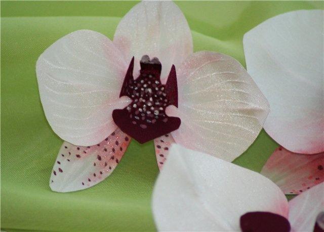 Орхидеи из кожи своими руками мастер класс 78