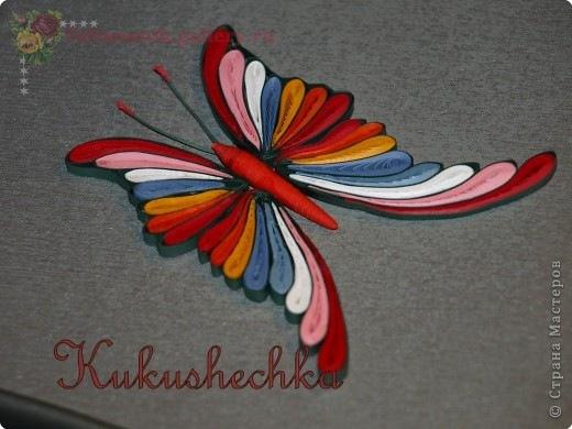 Бабочка из квиллинга для начинающих своими руками