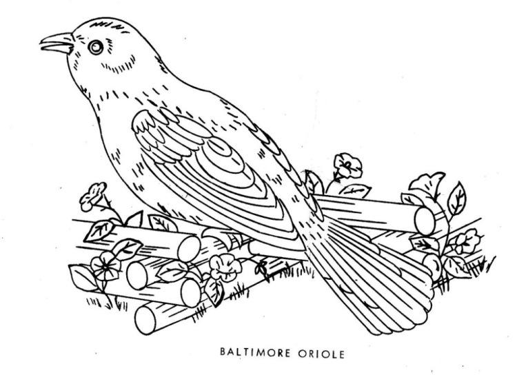 Вышивка гладью птицы схемы для начинающих 40
