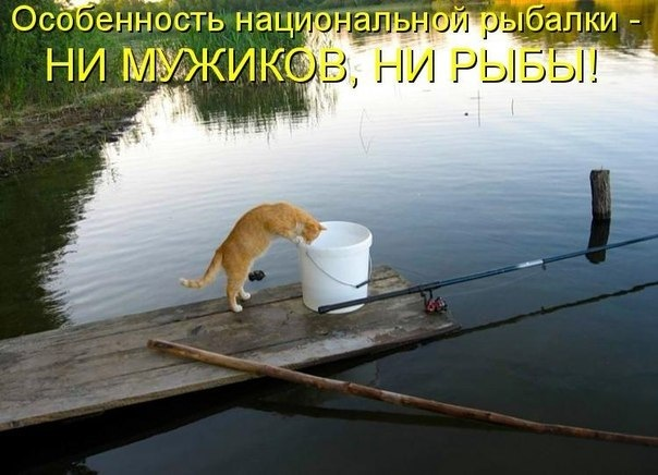 выпьем за рыбалку