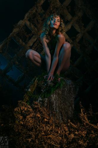 Студийный фотограф Kirill Nikolaev - Санкт-Петербург