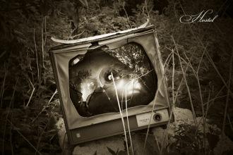 Фотограф предметной съемки Anastacy Felicia - Москва